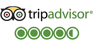 Rent yacht rating - TripAdvisor 4,5/5